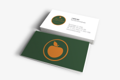 aplicacao-cartao-visitas-3
